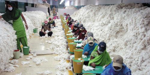 Hindistan_tekstil_Textilegence1