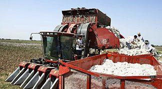 Turkey and Azerbaijan Cotton Cooperation cotton harvester